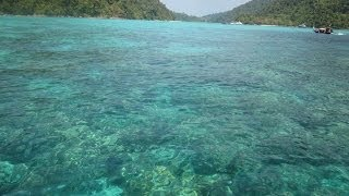Surin Islands Tour