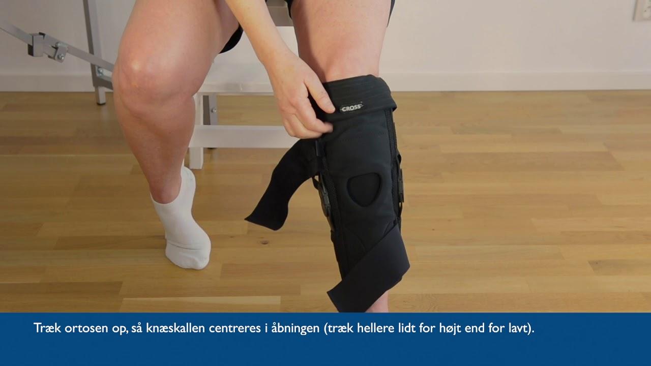 CROSS Knee Hyperextension Anvendelseinstruktion