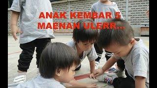 Video ANAK KEMBAR 5 MAENAN ULER...!!! MP3, 3GP, MP4, WEBM, AVI, FLV Februari 2018