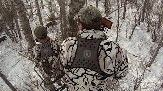 Video Archery Hunt-Wild Boar with Traditional Gear MP3, 3GP, MP4, WEBM, AVI, FLV Agustus 2017