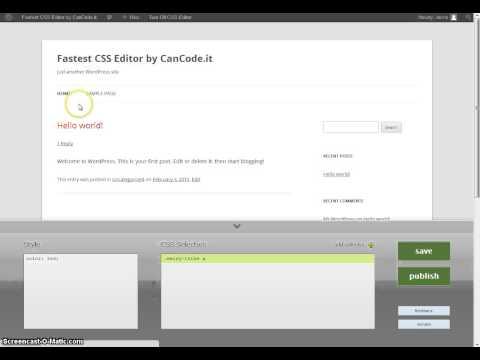 Fastest Css Editor (WordPress Plugin) – Quick Tour