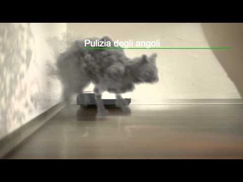 Video of Gatti di Polvere