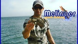 Pescaria Na Ilha Do Mel - 8