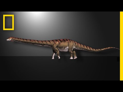 This Is the Biggest Dinosaur Ever Found | National Geographic (видео)