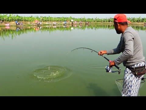 Video Best Catla Fishing Videos By Using Fishing Rod download in MP3, 3GP, MP4, WEBM, AVI, FLV January 2017