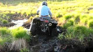 8. Yamaha Grizzly 350 Auto IRS 4x4  Sucked in Mud Hole