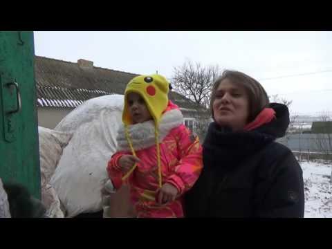 ЧЕЛЛЕНДЖ влог СЕЛО или ГОРОД коровы свиньи и конфеты детям подписчикам Мальчики против девочек (видео)