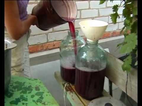 Как приготовить правильно вино из винограда в домашних условиях