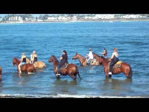 Horse Ride in the Ocean at Fiesta Island