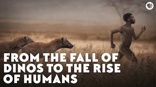 Video From the Fall of Dinos to the Rise of Humans MP3, 3GP, MP4, WEBM, AVI, FLV Januari 2019