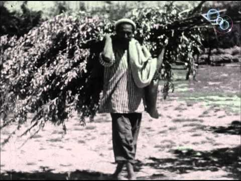 Life in Hunza (1937)