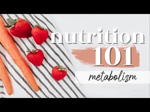 METABOLISM: THE BASICS  Nutrition 101 Ep. 10