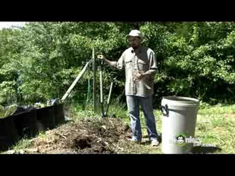 How To Successfully Grow A Healthy Organic Garden