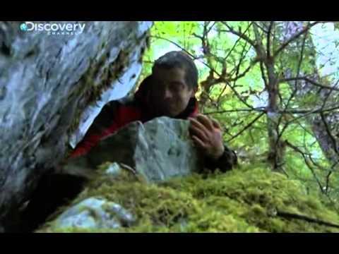 Bear Grylls - Aljaška