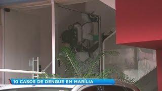 Marília intensifica combate à dengue após confirmação de novos casos