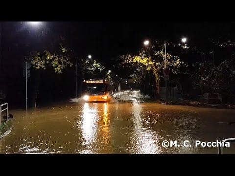 alluvione milano a novembre 2014 - il lambro esonda