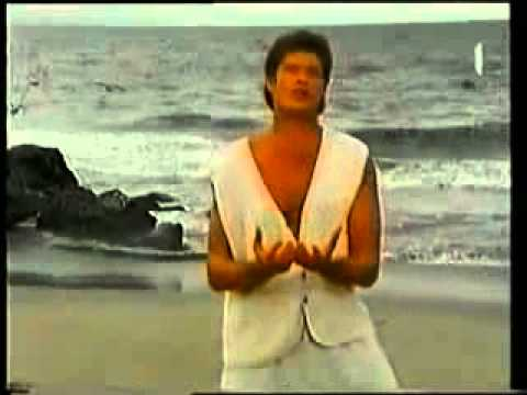 Du (Song) by David Hasselhoff