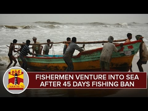 Fishermen-Venture-Into-Sea-After-45-Days-Fishing-Ban--Thanthi-TV
