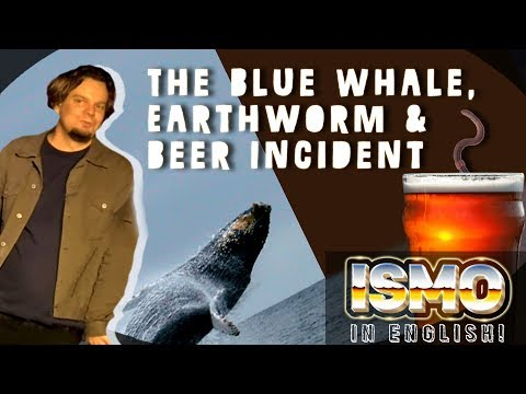 ISMO | The Blue Whale, Earth Worm & Beer Incident