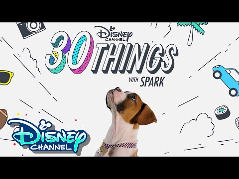 30 Things with Spark! | Pup Academy | Disney Channel