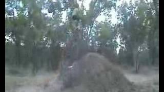 6. Chris Sweetapple Nac Nac Ktm 65