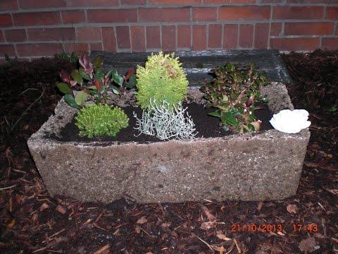 Beton giessen -Großer Pflanztrog aus Hypertufa mit Perlite, Blumenerde und Zement