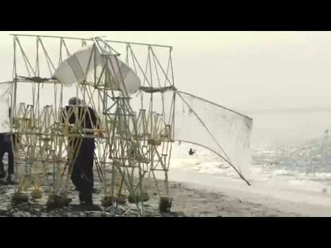 Artist Theo Jansen Walks His Magnificent Kinetic Strandbeests Along the Beach in San