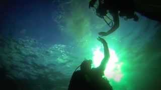 Whangaroa New Zealand  City pictures : Crayfish Diving - Whangaroa, New Zealand, 2013 - GoPro