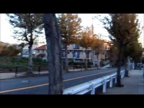 土橋小学校 川崎市宮前区2012年