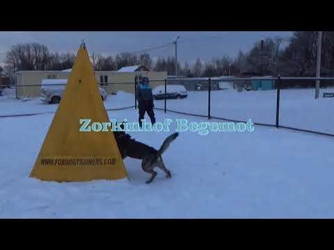 Тренинг в Олькаре