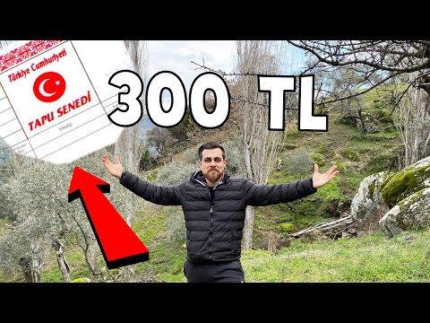 300 TL YE TARLA SATIN ALDIM ! NASILMI???