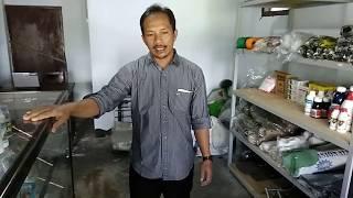Koperasi Pemasaran Sri Jaya Desa Sempu