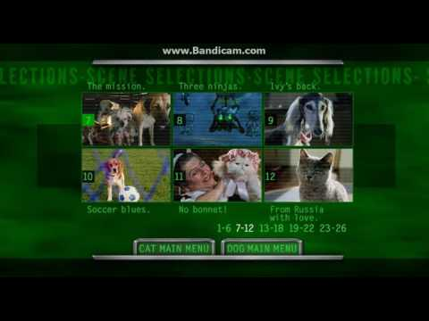 Cats & Dogs 2001 DVD Menu Walkthrough