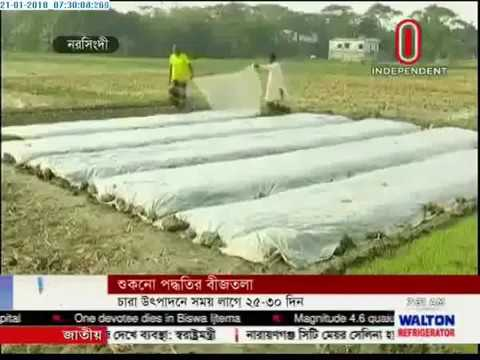 New form of seedbed method gains popularity (21-01-2018)