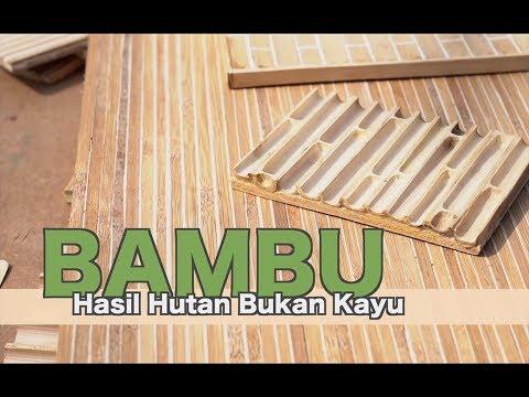 Manfaat Bambu - Hasil Hutan Bukan Kayu