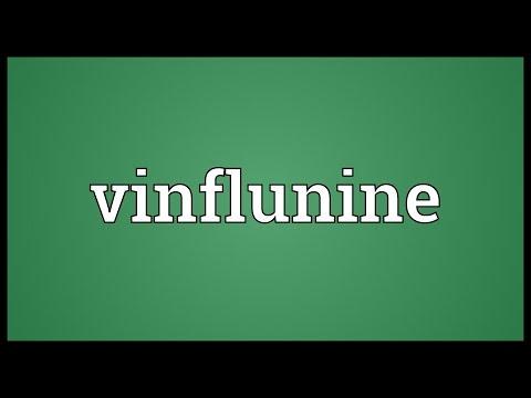 Vinflunine Meaning