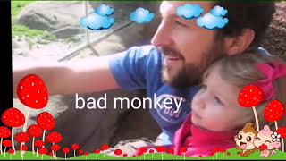 Video World top 5 most funny monkey videos -2016 wild & intelligent monkey MP3, 3GP, MP4, WEBM, AVI, FLV Juni 2017