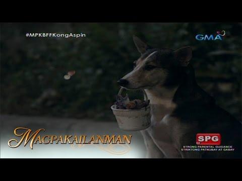 Video Magpakailanman: Dog show ni Eddieboy download in MP3, 3GP, MP4, WEBM, AVI, FLV January 2017