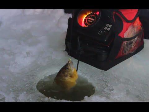 Bluegill Ice Fishing Tips