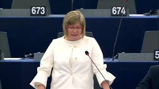 Felszólalás az Európai Tanács ülése előtt a migráció témájában