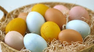 Make Naturally-Dyed Easter Eggs by Everyday Food