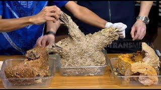 Video Bakso Trisula 3Kg, Bakso Tulang Punggung dan Bakso Bambu Bakar | HITAM PUTIH (20/12/18) Part 2 MP3, 3GP, MP4, WEBM, AVI, FLV Februari 2019
