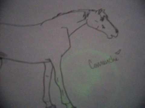 A Comanche Drawing for gottajump3