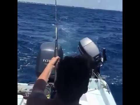Macché Pescara… Max Oddo pesca un barracuda!