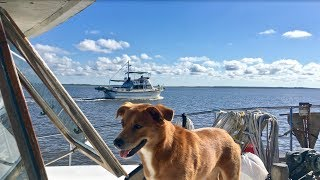 Another successful day open the water cruising all the way into South Carolina via the ICW. Georgia is definitely curvy, windy, and...