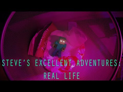 Steve's Excellent Adventures: Real Life #SEARL - Realistic Minecraft Musical Series Preview)