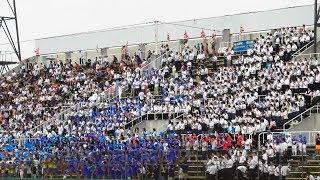 3回裏リード広げ、盛り上がる成章スタンド。応援はサンライズ、龍谷大平安対京都成章。第99回全国高校野球京都大会