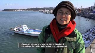 Taean-gun South Korea  city pictures gallery : Tour Place_안면도(Anmyeon Island)