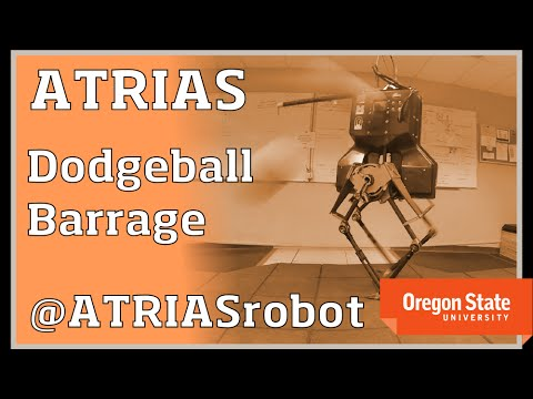 The Robots Can't Take Over Yet, They Can't Even Play Dodgeball!