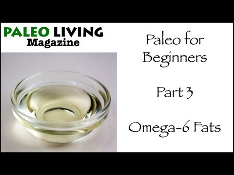 Paleo Diet for Beginners – Part 3 – Omega 6 Fats
